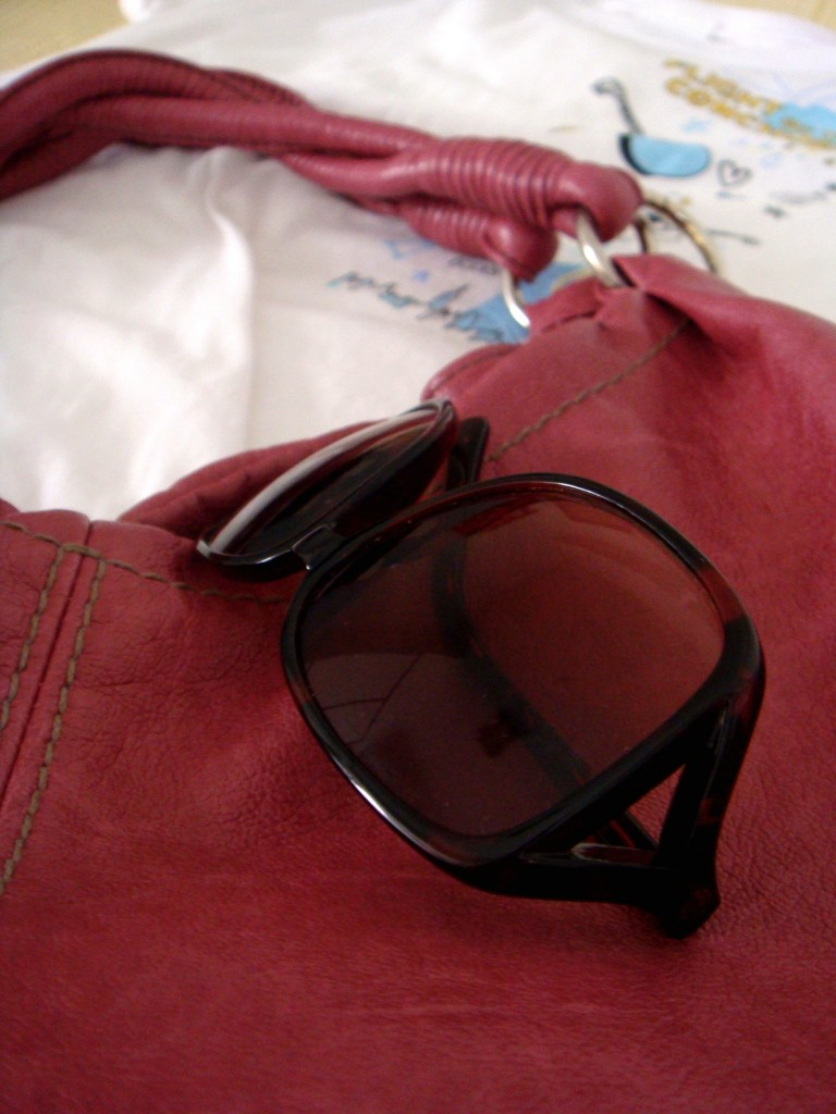 roberto vianni sunglasses and aldo bag