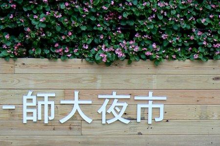 台北師大夜市 shida night market